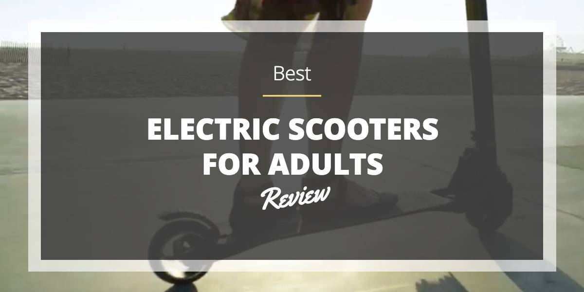 best-electric-scooter-for-adults